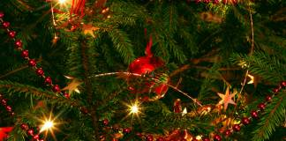Celebrate Christmas in Turkey Christmas Wishes